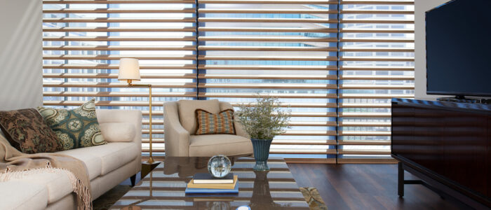 Satin Metallic Pirouette® Window Shadings
